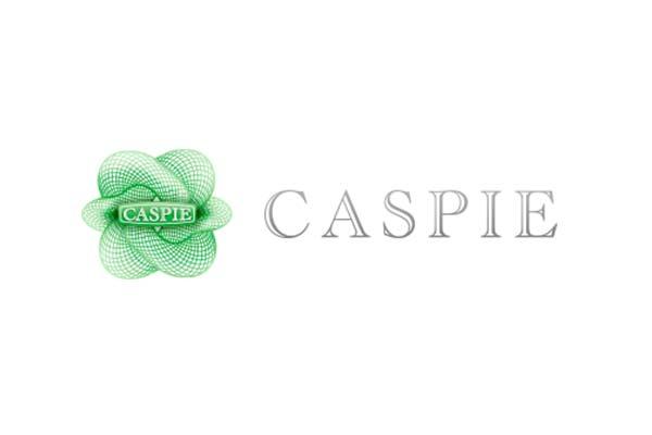 cvg_assicurazioni_caspie